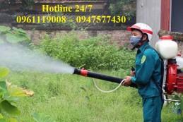 Dịch vụ diệt muỗi tại nhà ở Nhơn Trạch – Đồng Nai