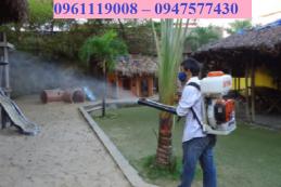Công ty diệt muỗi tại nhà TP Biên Hòa