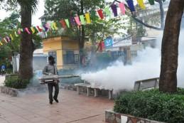 Diệt muỗi tại Hà Nội – Bảo hành 1-3 tháng, an toàn sức khỏe, sạch 100% muỗi