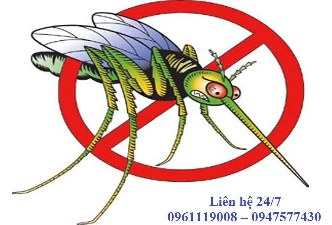 Dịch vụ phun thuốc diệt côn trùng tại Phúc Thọ Hà Nội