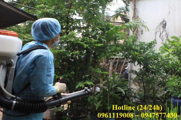 Dịch vụ phun thuốc diệt ruồi tại Ninh Thuận