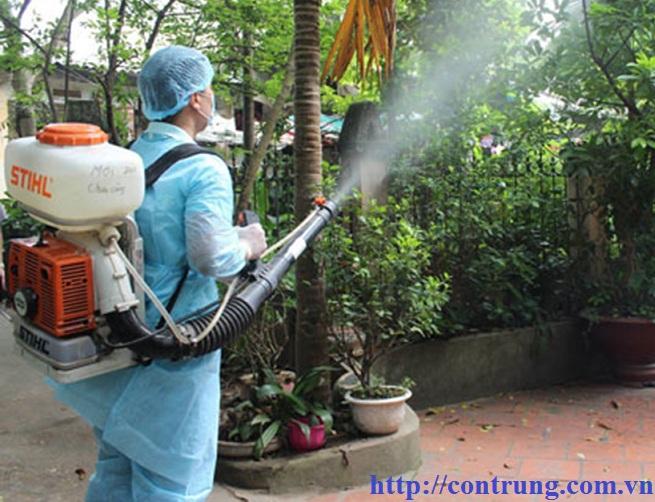 Dịch vụ phun thuốc côn trùng tại Phúc Thọ Hà Nội