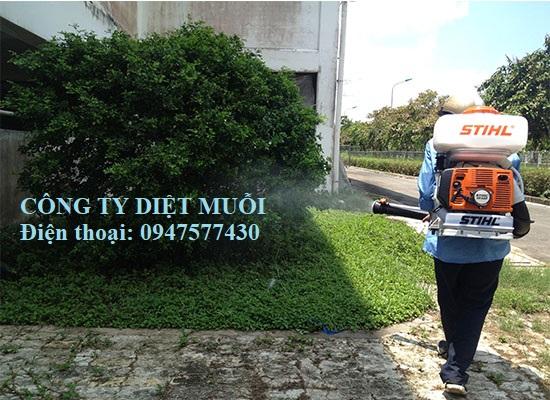 Dịch vụ phun thuốc diệt côn trùng tại quận Hà Đông, Hà Nội