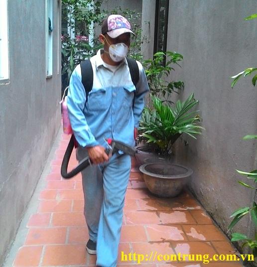 Dịch vụ diệt côn trùng chuyên nghiệp hàng đầu huyện Thạnh Thất Hà Nội