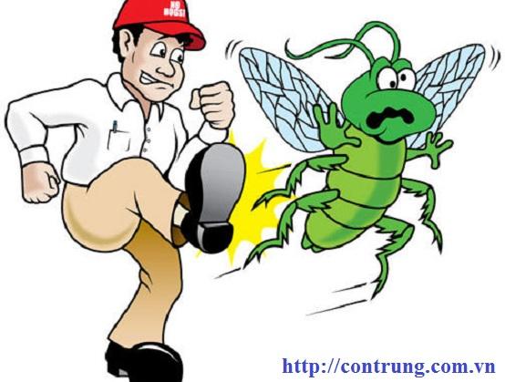Dịch vụ diệt côn trùng hàng đầu tại Thanh Oai Hà Nội