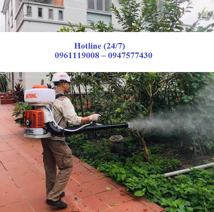 Công ty phun thuốc diệt côn trùng chuyên nghiệp tại Quảng Trị
