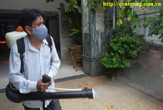 Phun thuốc diệt sâu hại cho cây tại Tây Ninh
