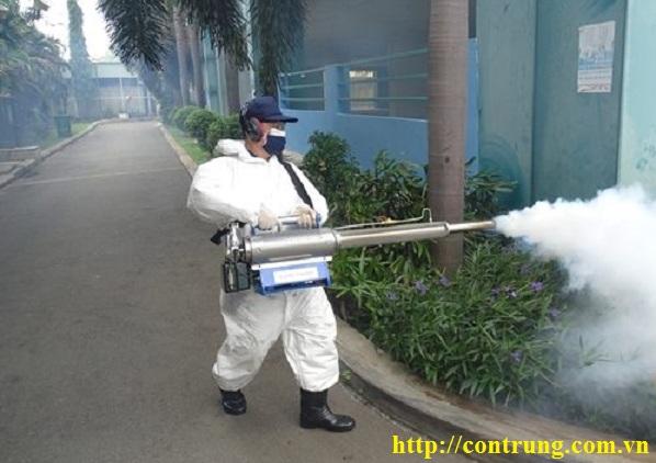 Dịch vụ diệt côn trùng tại Đông Anh Hà Nội
