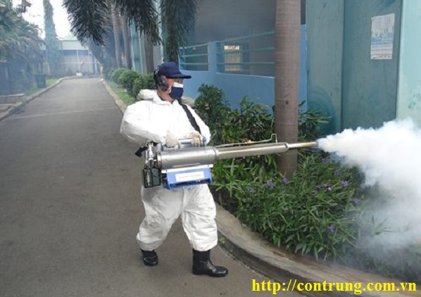Dịch vụ phun diệt côn trùng tại Đông Anh, Hà Nội