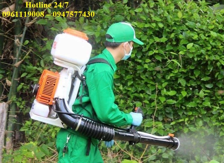 Dịch vụ diệt côn trùng tại Bình Định