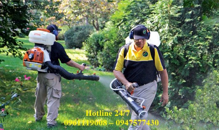 Dịch vụ phun thuốc diệt ruồi chuyên nghiệp tại Phú Yên