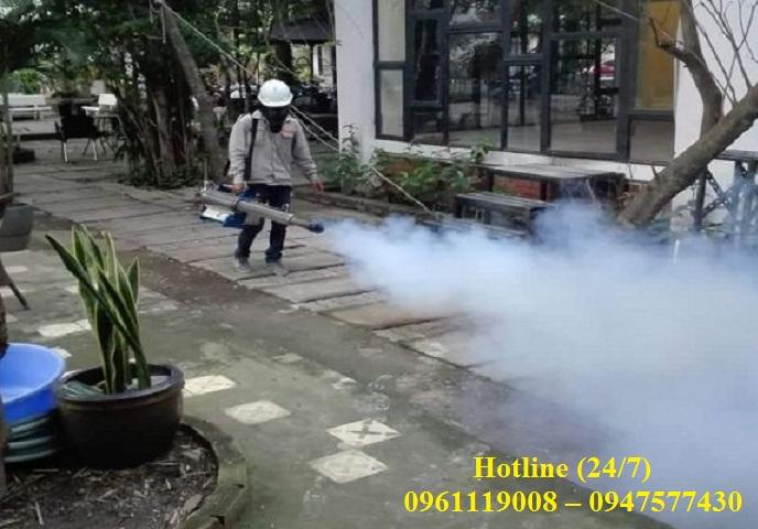 Dịch vụ diệt sâu cây tại Ninh Thuận