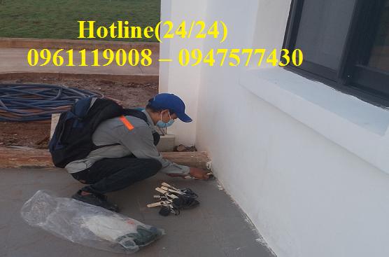 Công ty chúng tôi chuyên nhận các dịch vụ xử lý chuột tại nhà, công ty, văn phòng nhà máy, bệnh viện, trường học,...